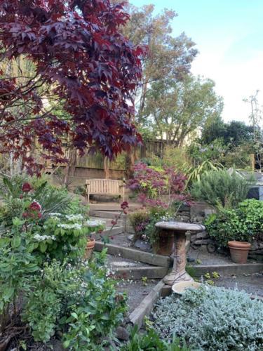 gardentrimm